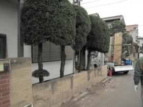 fence1-1